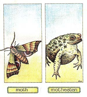 Mothmotheaten